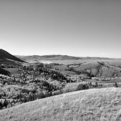 gl_meadow_overlook_bw-min